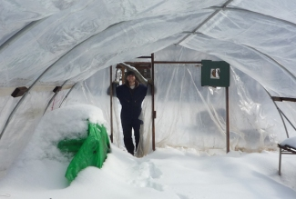 So how did all that snow get inside the greenhouse?