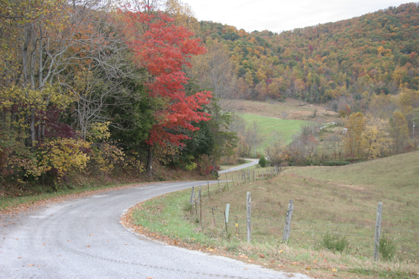 Schaeffer's Hollow Lane, in October
